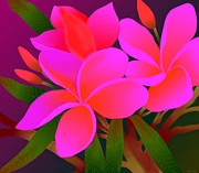 Plumerias Digital Art Prints - My Pink Plumerias Print by Latha Gokuldas Panicker    ker