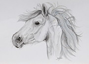 Horse Framed Prints Prints - My pony Print by Janina  Suuronen
