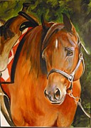 Quarter Horse Framed Prints - My Quarter Horse Framed Print by Adele Pfenninger