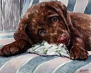 Chocolate Paintings - My Rope Toy by Molly Poole