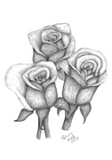 Blooming Drawings Metal Prints - My Roses 3 Metal Print by Patricia Hiltz