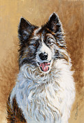 Collie Painting Framed Prints - Mya Framed Print by Richard De Wolfe