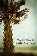Karol  Livote - Myrtle Beach SC