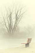 Mystical Landscape Photo Posters - Mysterious Peace Poster by Karol  Livote