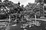 Jamie Pham - Mystery Fountain - Huntington Library and Botanical Gardens.