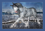 The Horse Digital Art Metal Prints - Mystic Inspiration Metal Print by Betsy A Cutler East Coast Barrier Islands