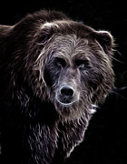 Hunger Prints - Mystical Bear Print by Athena Mckinzie