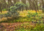 Ma Digital Art - Mystical Forest by Bill  Wakeley