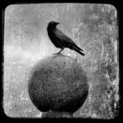 Gothicolors Donna Snyder - Mystical Globe