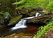 Beautiful Creek Prints - Mystical Magical Place Print by Robert Harmon