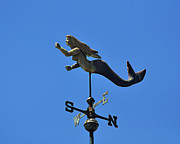 Weather Vane Prints - Mystical Mermaid Print by Al Powell Photography USA
