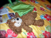 Disney Bear Photos - Nap Time Bear by Thomas Woolworth
