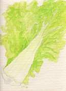 Napa Pastels Posters - Napa Cabbage Poster by Jocelyn Paine