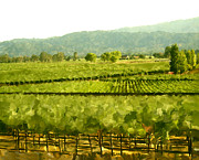 Napa Valley Vineyard Digital Art Framed Prints - Napa Framed Print by Paul Tagliamonte