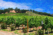 Napa Valley Vineyard Digital Art Framed Prints - Napa Valley California Vineyard Framed Print by Doug Oriard