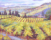 Pastoral Vineyards Painting Posters - Napa Valley Vineyards Poster by David Lloyd Glover