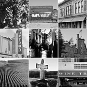 Wingsdomain Art and Photography - Napa Valley Wine Country 20140905 black and white