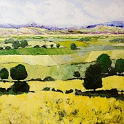 Allan P Friedlander - Napa Yellow2