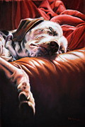 Sleeping Dog Pastels Prints - Naptime Print by Debbie Patrick