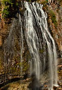Adam Jewell - Narada At Rainier