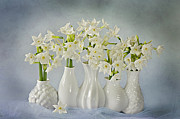 Cut Flowers Prints - Narcissus Paperwhites Print by Jacky Parker