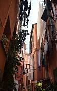 Dany  Lison - Narrow Street in Vernazza