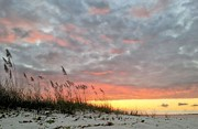 Pensacola Beach Prints - NAS Pensacola Print by JC Findley
