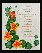 Prayer Digital Art Originals - Nasturtiums and Serenity Prayer by Barbara Griffin