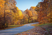 Natchez Prints - Natchez Trace Print by Brian Jannsen