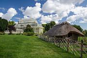 Martina Fagan - National Botanical Gardens Dublin