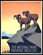 Wpa Prints Framed Prints - National Parks Poster 1939 Framed Print by Padre Art