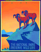 National Park Service Prints - National Parks Wild Life Poster Print by Edward Fielding