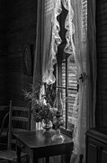 Hurricane Lamp Photos - Native Flowers in Vase and Ruffled Curtains by Lynn Palmer