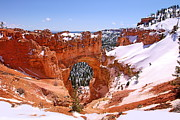 Viktor Photo Prints - Natural Bridge. Bryce Canyon Print by Viktor Savchenko