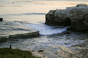 Kate Johnson - Natural Bridges Beach