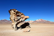 Desert Metal Prints - Natural Rock Sculpture Metal Print by James Brunker