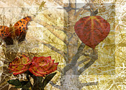 Angela Castillo Art - Nature Collage by Cherie Haines