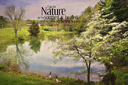 Kathy Jennings - Nature