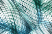Photo Manipulation Digital Art Posters - Nature Leaves Abstract in Turquoise and Jade Poster by Natalie Kinnear
