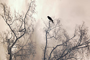 Dreamy Sepia Nature Photos Posters - Nature Lone Crow In Trees - Surreal Fantasy Dreamy Trees Nature Raven Crow In Trees Poster by Kathy Fornal