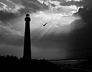 Barnegat Lighthouse Framed Prints - Nature Shines Brighter in black and white Framed Print by Mark Miller