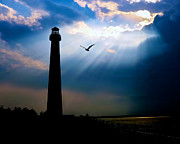 Barnegat Lighthouse Framed Prints - Nature Shines Brighter Framed Print by Mark Miller