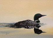 Loon Painting Framed Prints - Nature So Fair Framed Print by James Williamson