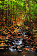 New Hampshire Fall Foliage Framed Prints - Nature - The Scenic Chesterfield Gorge Framed Print by Thomas Schoeller