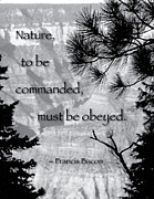 Nature To Be Commanded Print by Mike Flynn