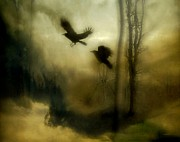 Passerines Posters - Natures Blur Poster by Gothicolors And Crows