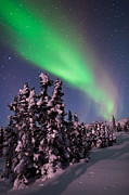 Snowy Night Art - Natures Canvas In The Northern Sky by Mike Berenson