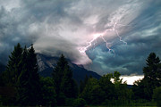 Jeka World Photography Prints - Natures Lightning Rod Print by Jeka World Photography