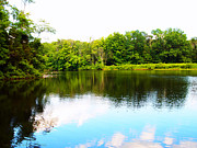 Nature Center Pond Prints - Natures Mirror Print by Deborah Fay