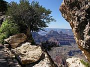 North Rim Photos - Natures Window by Mel Steinhauer